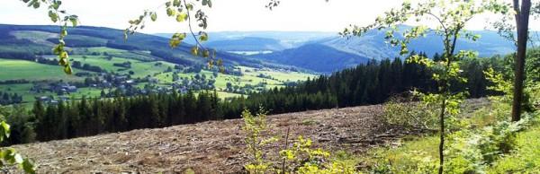 Ardennen, Blick über das Tal der Amblève